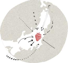 とちぎ県との関わり方イメージ