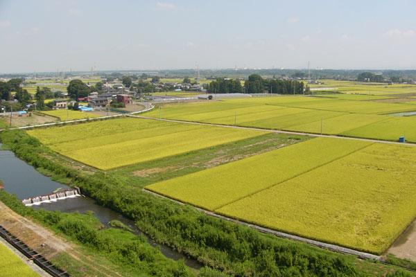 上三川町の魅力イメージ その2