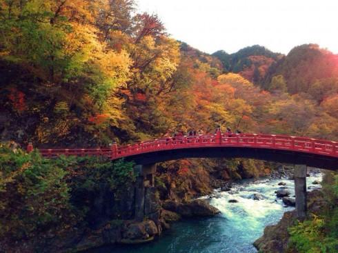 \栃木県北4市が集合!/観光地で暮らす・働く