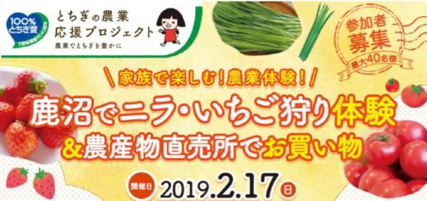 ニラ・いちご狩り体験参加者募集中!