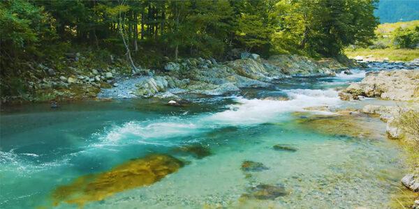 【鹿沼市】ミッションは河川の環境保全とアクティビティ開発